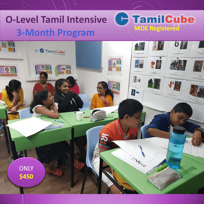 O-Level Tamil Intensive coaching